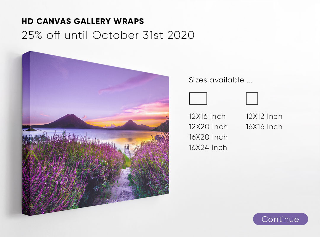 Canvas Offer